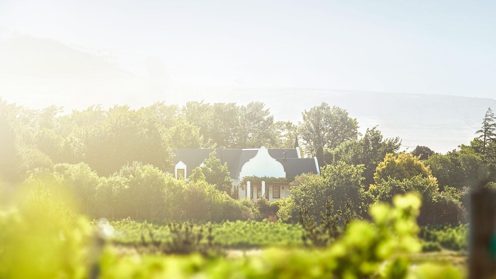01-mt-vernon-winery